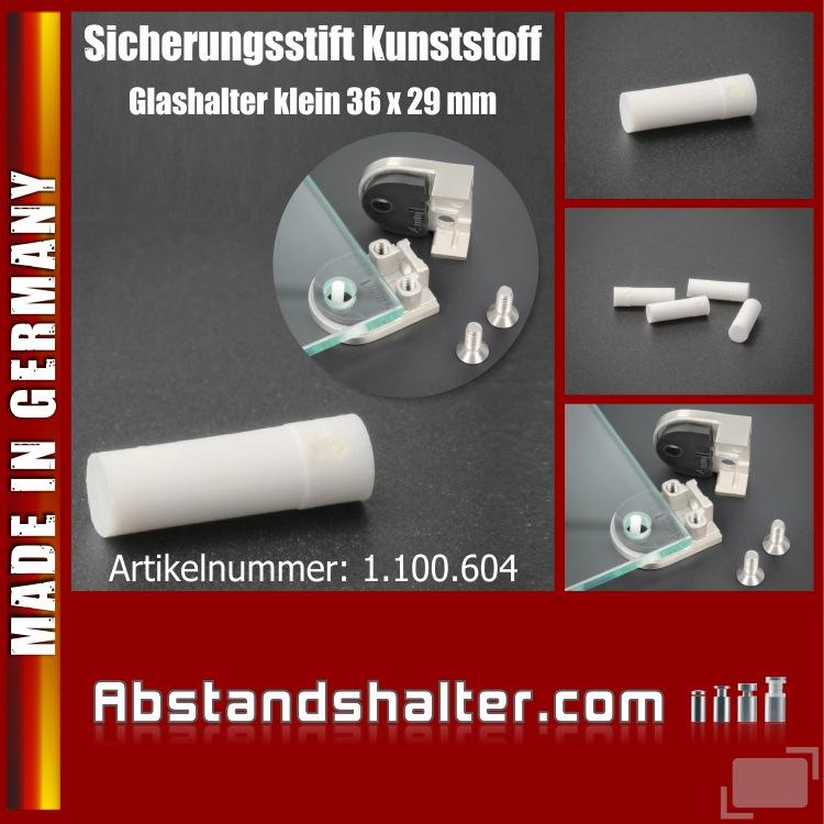 Kunststoffstift 3,9x12,5 mm Sicherungsstift Glashalter klein 36x29 mm